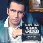 دانلود آهنگ جدید مهمون ناخونده از علی زیبایی (تکتا)