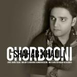 دانلود آهنگ جدید قربونی از شهاب خلیلی