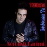 دانلود آهنگ جدید تهران بدون تو از سروش کریمی