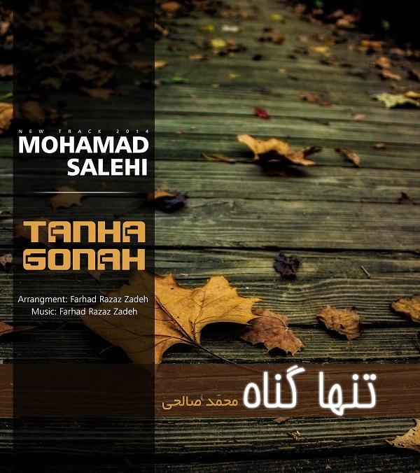 دانلود آهنگ جدید تنها گناه از محمد صالحی