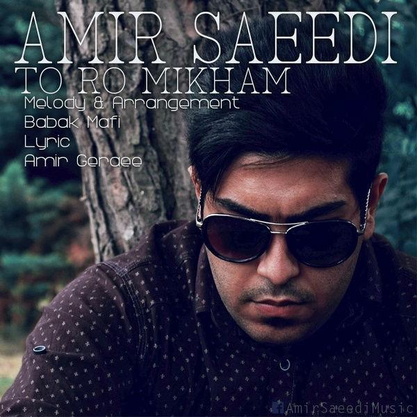 دانلود آهنگ جدید امیر سعیدی – تورو میخوام