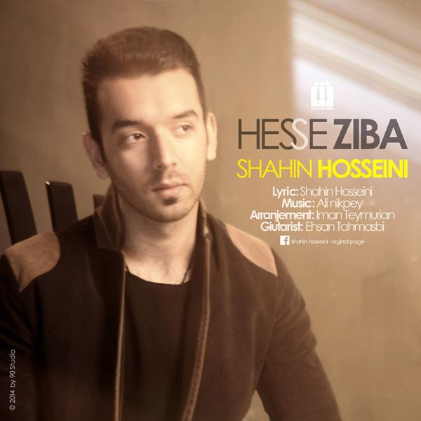 Shahin Hosseini - Hesse Ziba