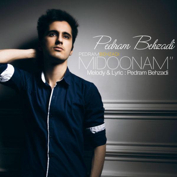 Pedram Behzadi - Midoonam